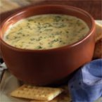 Cheesy Spinach Soup